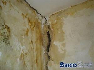 Reparer Grosse Fissure Mur Exterieur : fissure 2 cm dans un mur ~ Melissatoandfro.com Idées de Décoration