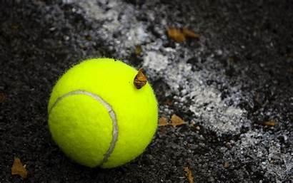 Tennis Ball Wallpapers Court Balls Tennisbal Wallpapersafari