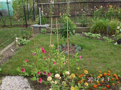 Garten Umgraben Herbst Oder Frühjahr by Rosenbeet Neu Gestalten Jetzt Oder Erst Im Fr 252 Hjahr