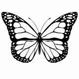Butterfly Coloring Pages Printable Butterflies Sheets Sheet Printables Monarch Template Printing Fly Colour Templates Google Worksheets Prints sketch template