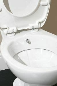 combined bidet toilets benefits of combined bidet toilet ebay