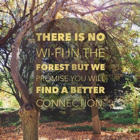 connect  nature feng shui  life  tao  dana