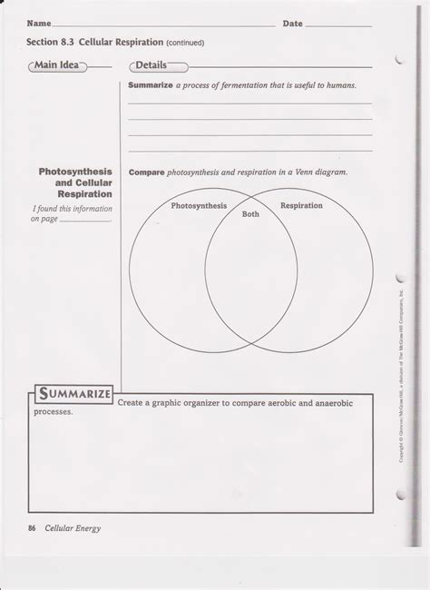 pictures aerobic respiration worksheet mindgearlabs