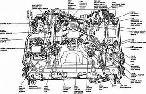 Ford 4 6l V8 Engine Diagram 38070 Desamis It
