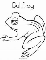 Coloring Bullfrog Tadpole Frog Frogs Pages Template Outline Pollywog Drawings Templates Hibernate Tracing Noodle Twistynoodle Sketch Change 75kb 605px sketch template