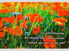 Freundschaftskarte wwwspruechetantede