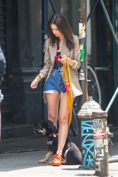 Emily Ratajkowski Walking Her Dog Nyc