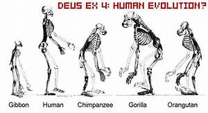 Next Deus Ex Likely Called Deus Ex Human Revolution