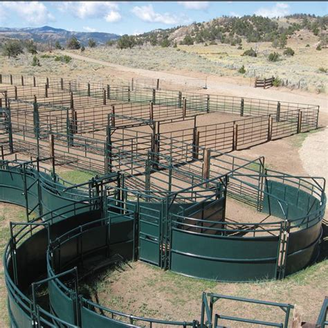 cattle handling livestock corral systems designs ranch barn system farm corrals equipment farming goat beef grandin temple bulls facilities designed