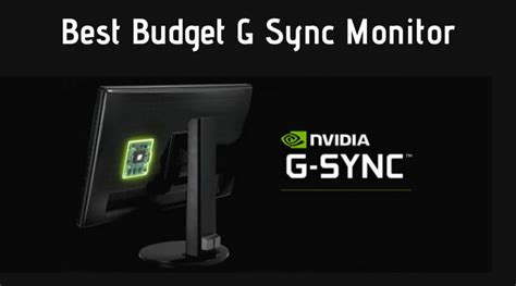 budget  sync monitor  affordable price  reviews