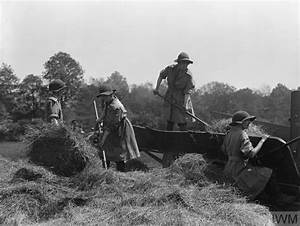 The Women U0026 39 S Land Army In Britain  1915