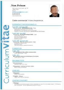 Un Resume In by Exemple Cv D Un Informaticien Cv Anonyme