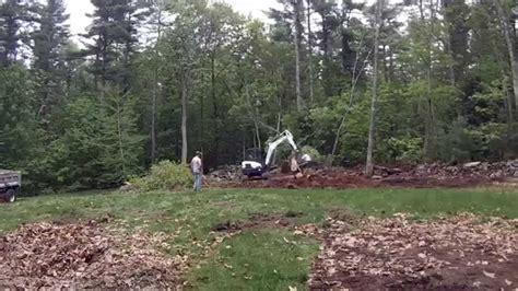 mini excavator pushing  trees youtube