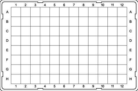 96 Well Plate Template 96 Well Plate Template Tryprodermagenix Org