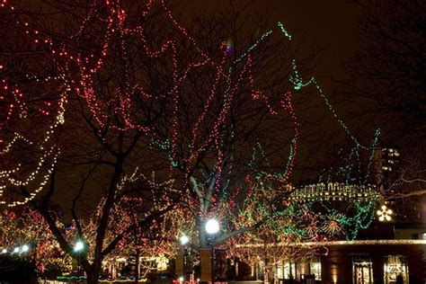 lincoln park zoo christmas lights flickr photo sharing