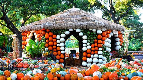 botanical gardens dallas dallas arboretum has pumpkins galore 171 cbs dallas fort worth
