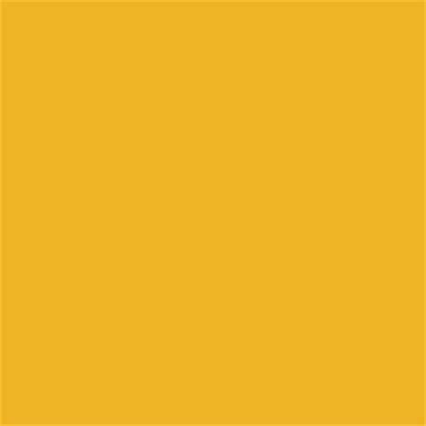 Warning Yellow In Special Matt 'Fade' Shade