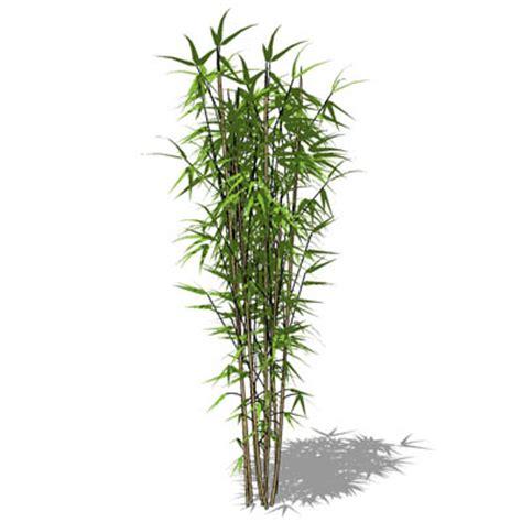 bamboo 3d formfonts 3d textures