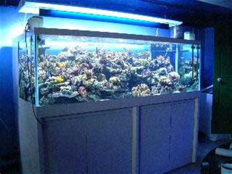 aquarium d occasion le bon coin aquarium recifal le bon coin