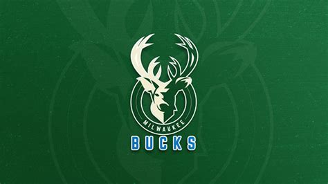 thought  nba team logo redesigning project