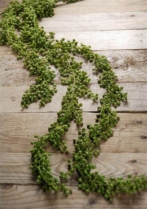 string  pearls succulent garland ft