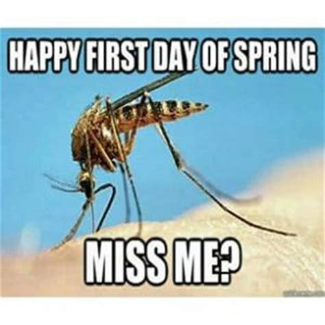 First Day Of Spring Meme - mosquito jokes kappit