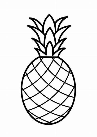 Coloring Fruit Pages Printable Drawing Pineapple Line