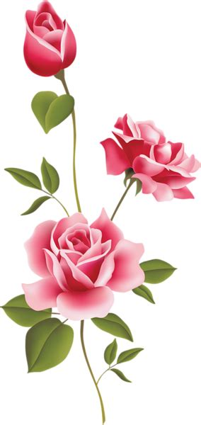 Pink Rose Art PNG Clipart Gallery Yopriceville High