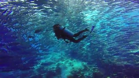 Dive Sipadan by Wonderful Diving In Sipadan Island 2015