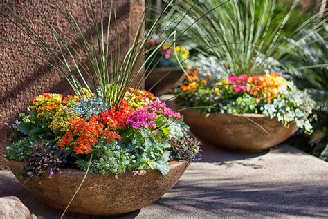 potted plant arrangements you can use potted flowers instead of fancy flower arrangements this is a good decoration