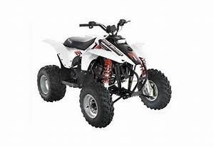 Polaris Trailblazer 250 Service Manual Repair 2004
