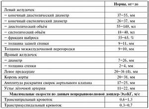 Гипертония norma
