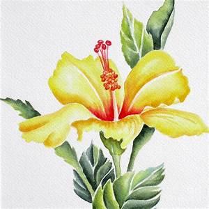 Yellow Hibiscus Painting by Deborah Ronglien