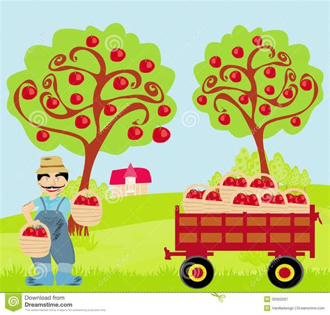 apple orchard illustration farmer in the orchard stock vector illustration of green