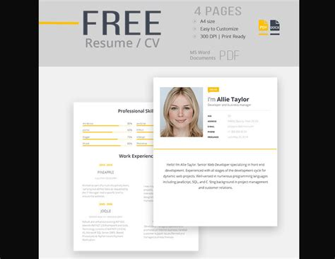 Free Cv Templates To Use by 65 Professional Cv Templates For Ms Word That Look Like