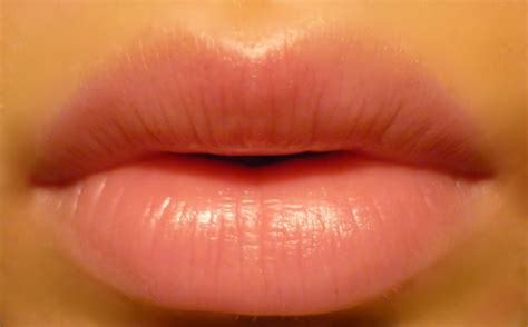 ingredients  soft beautiful lips