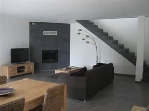 Deco Avec Du Gris : charmant peinture gris clair salon et inspirations et mur ~ Zukunftsfamilie.com Idées de Décoration