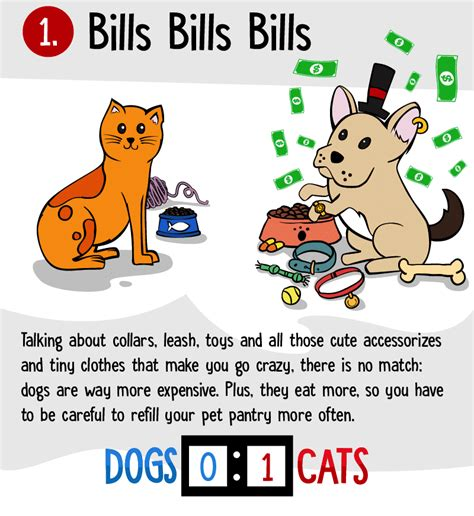 cats dogs better than why reasons infographic cost money don displayed awesome lots eat toys stuff need accessories they