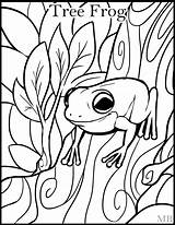 Frog Coloring Pages Realistic Tree Clipartmag sketch template