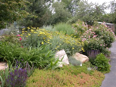 xeriscape garden plants green fork utah xeriscape a creative landscaping solution