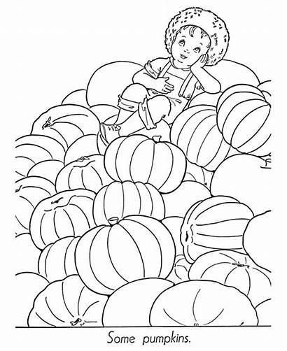 Halloween Coloring Pumpkin Pumpkins Sheets Pile Boy