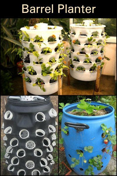 diy barrel planter barrel planter diy garden projects