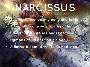 narcissus mythology summary