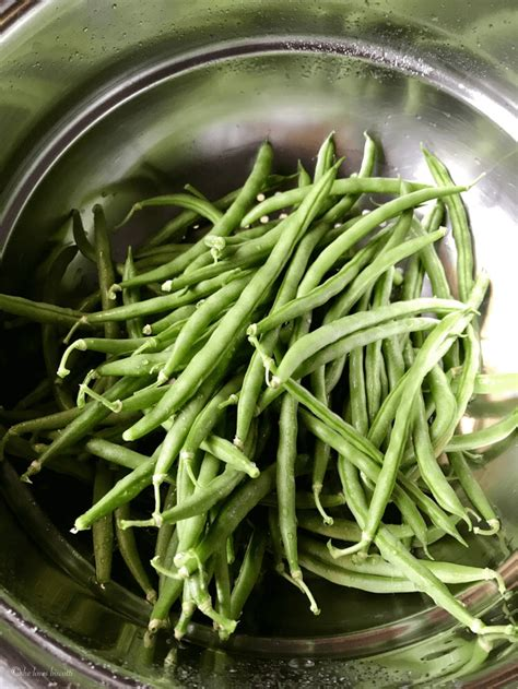can you freeze fresh green beans how to freeze garden fresh green beans she loves biscotti