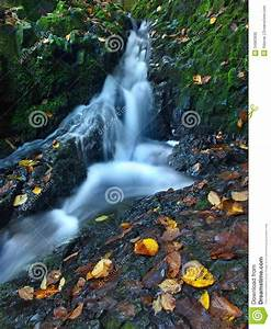 Small Waterfall Full Of Water After Rain. Stock Photo ...