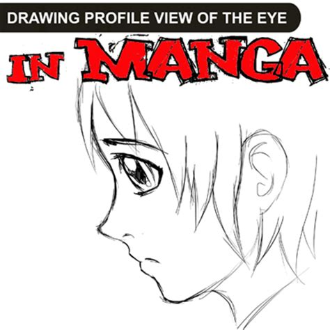Anime Eyes From The Side How To Draw Anime Manga Eyes In Profile Side View 4