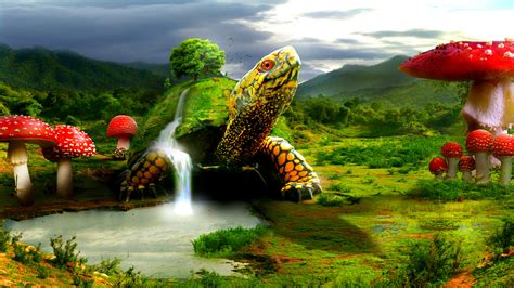 Abstract Turtle Hd Wallpaper Hd Wallpapers Desktop Images