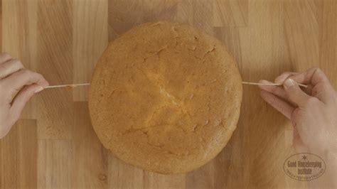 cut  sponge cake     cut  sponge