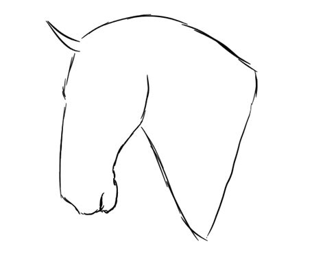 horse face template