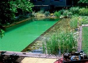piscine naturelle bio eco ecolo pour ecologie bien etre With construire sa piscine naturelle soi meme